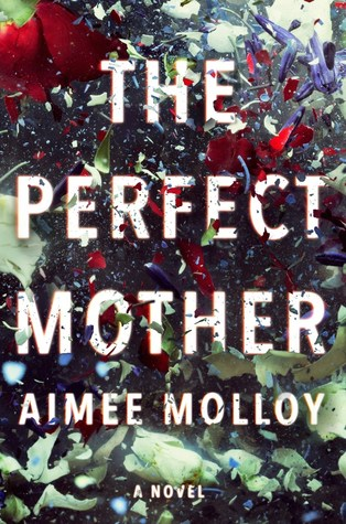 Review: The Perfect Mother by Aimee Molloy